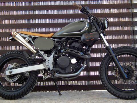 Lab  37 Honda NX 400 FALCON (1)
